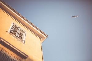 house-sky